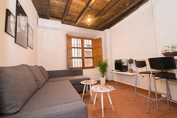 Apartamento en Granada centro 1